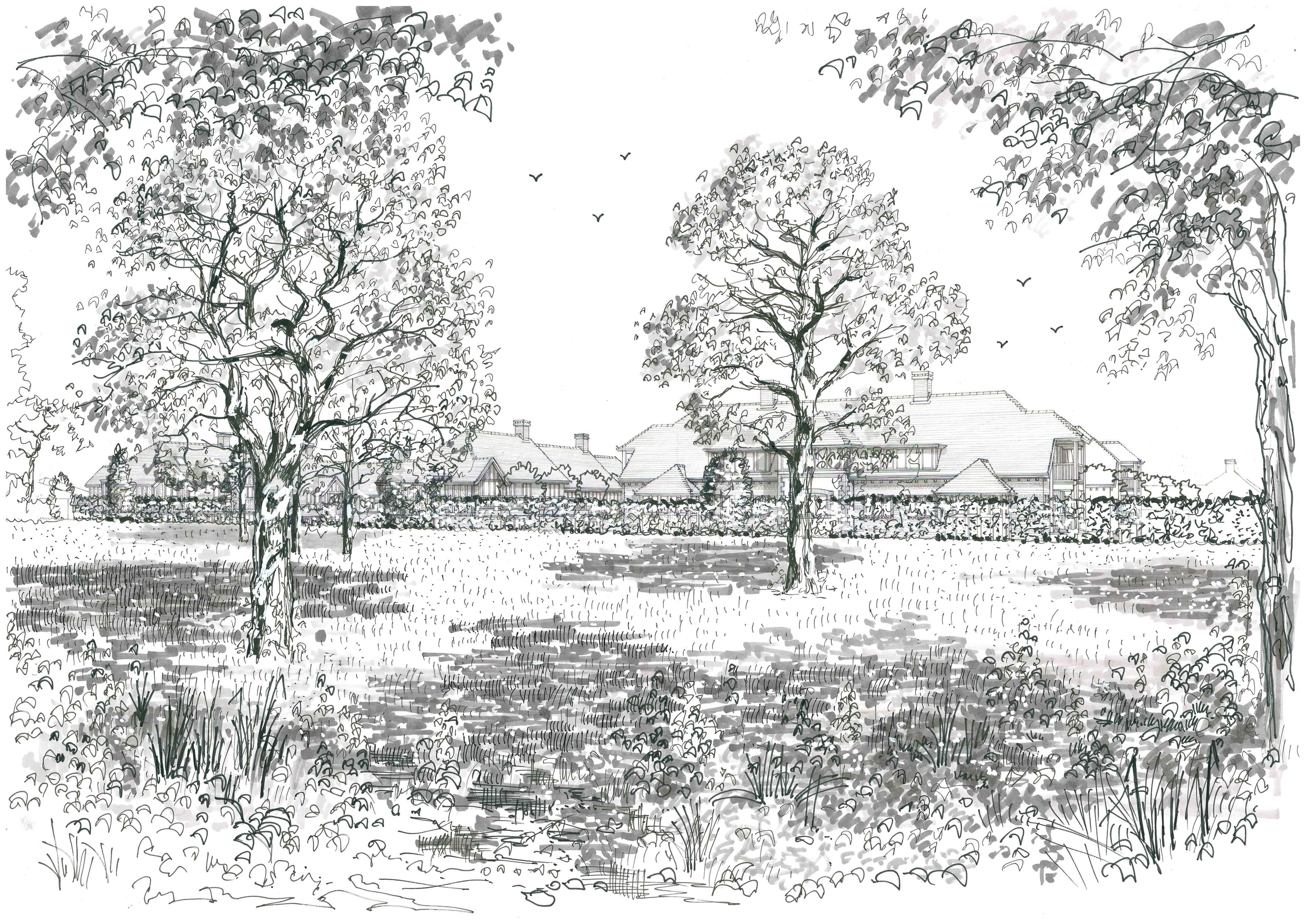 Perspective BlksBCD from green belt_with trees_20150821.jpg