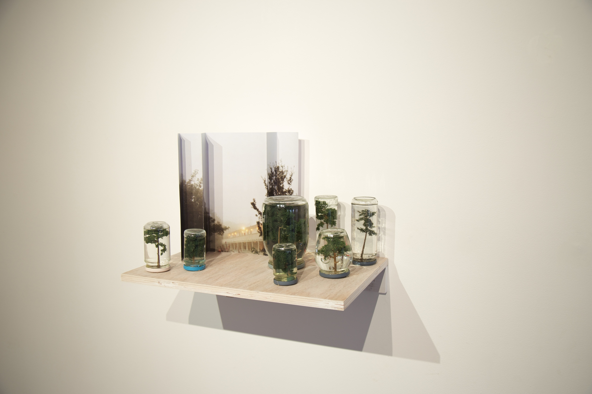 Sylvan setting series, 2015, Beth O'Halloran