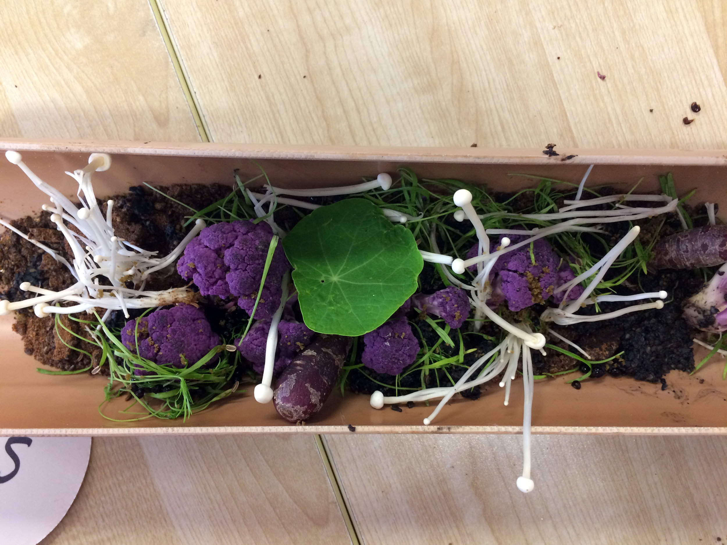 An edible savoury garden floor. There was also a sweet forest floor.