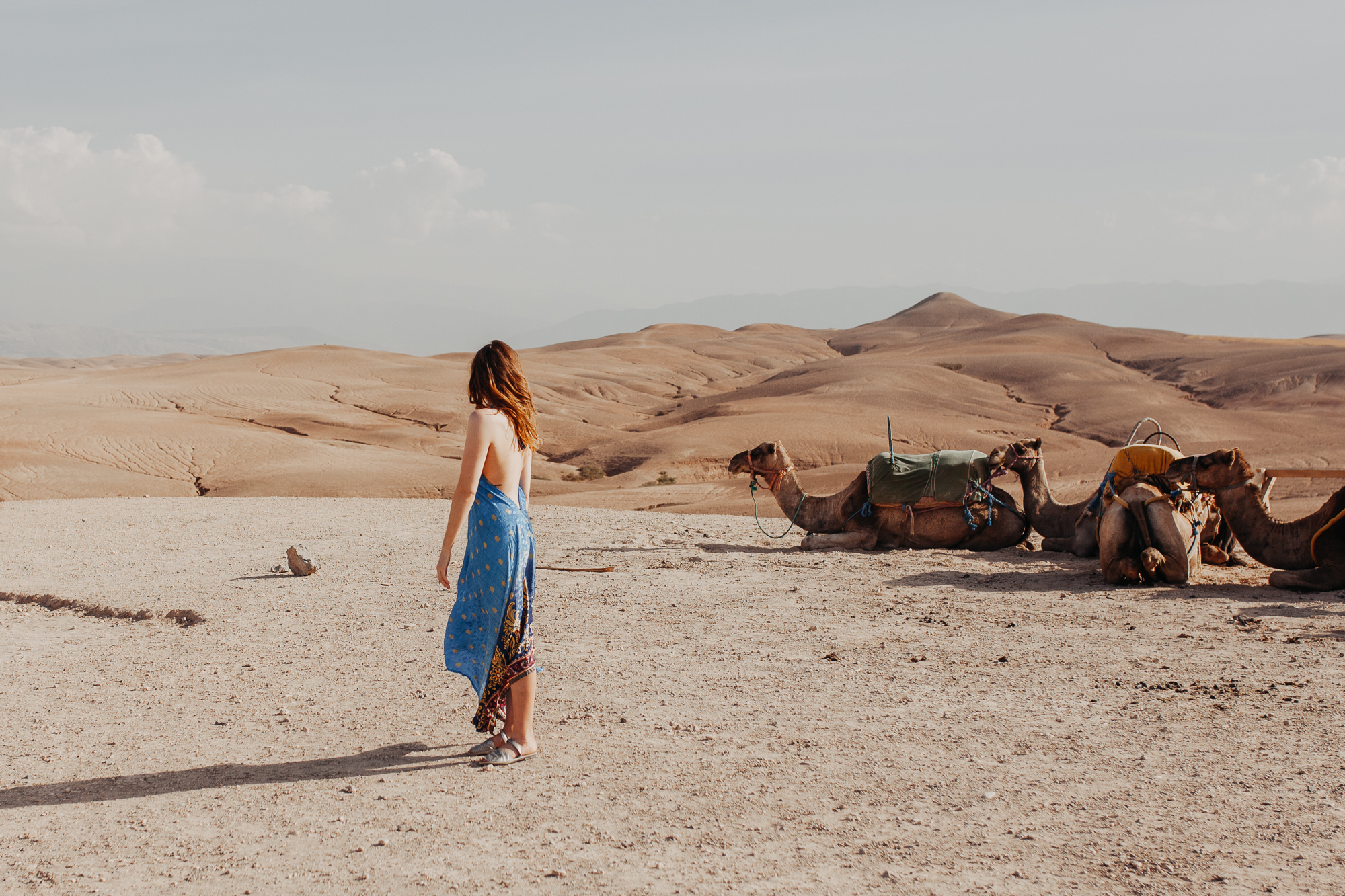 Meg with the camels in Morooco