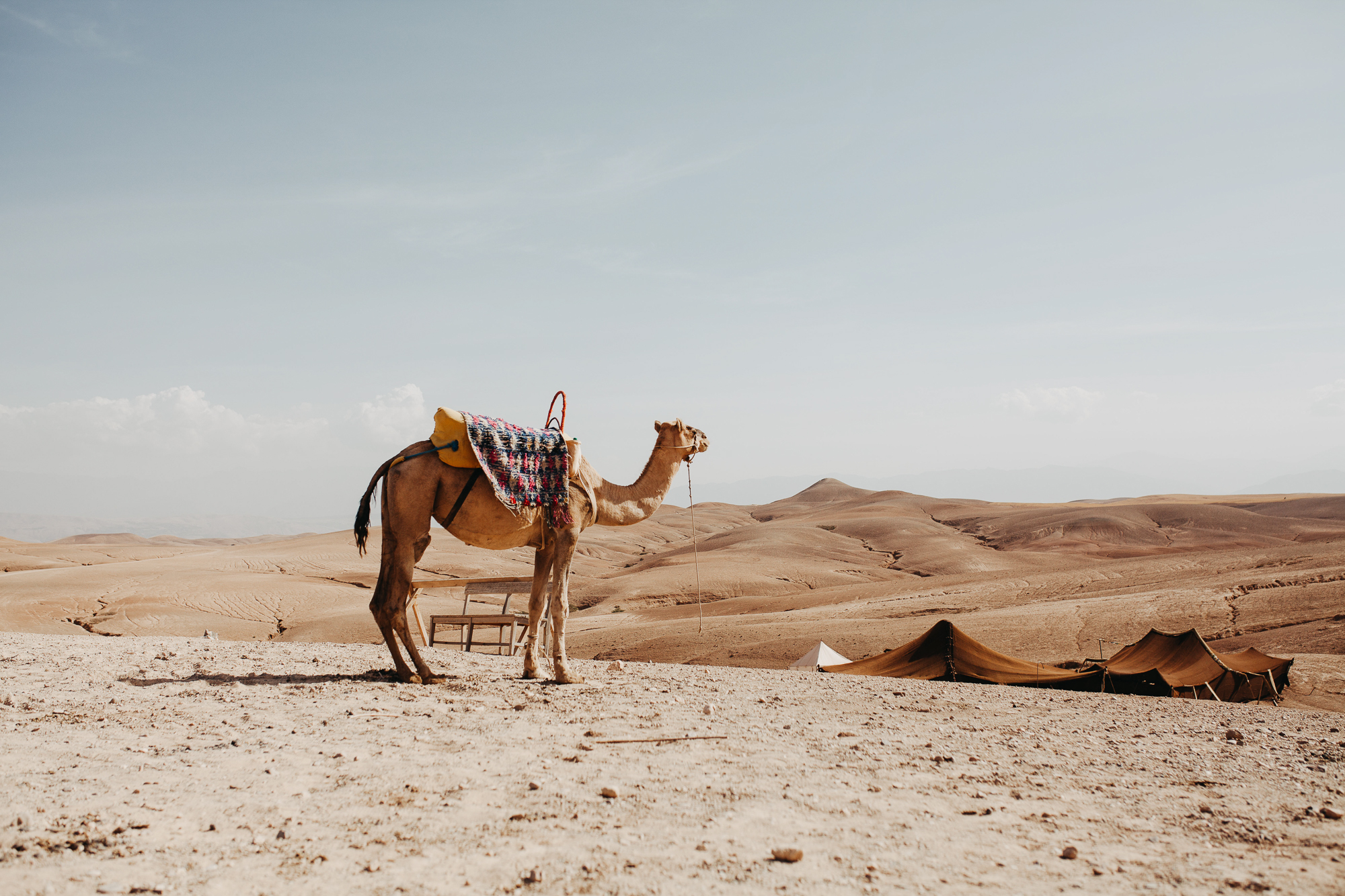 Meg's images from Morocco