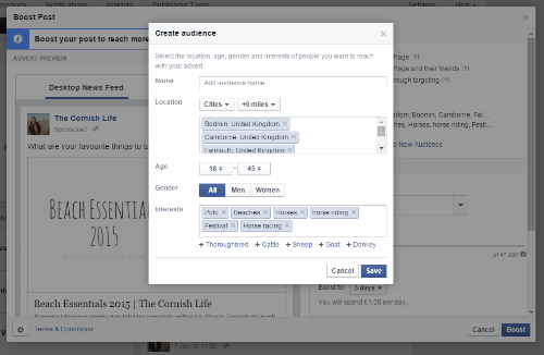 Target audience for Facebook ads