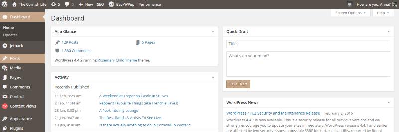 Writing a Blog Post on WordPress