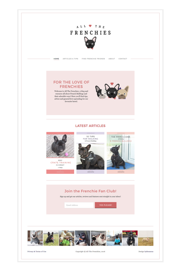 All The Frenchies - Squarespace Website Design