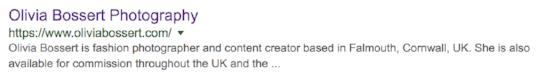 search engine description