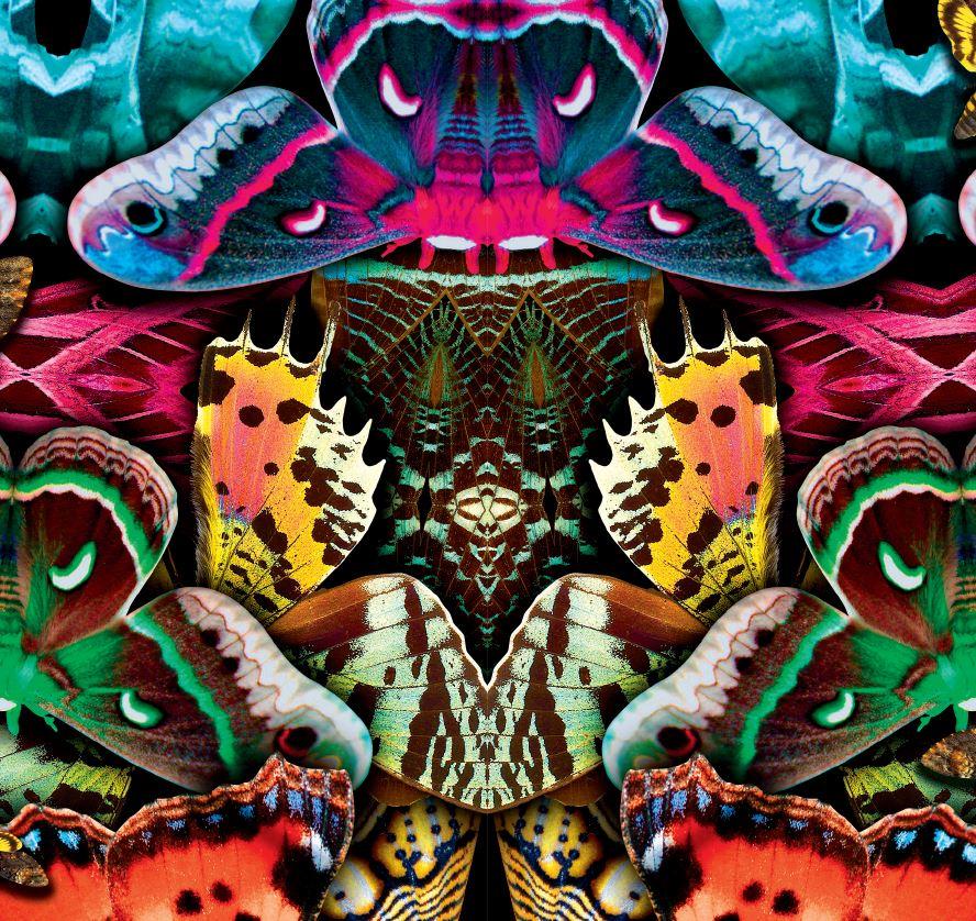 moth machine hyper.JPG