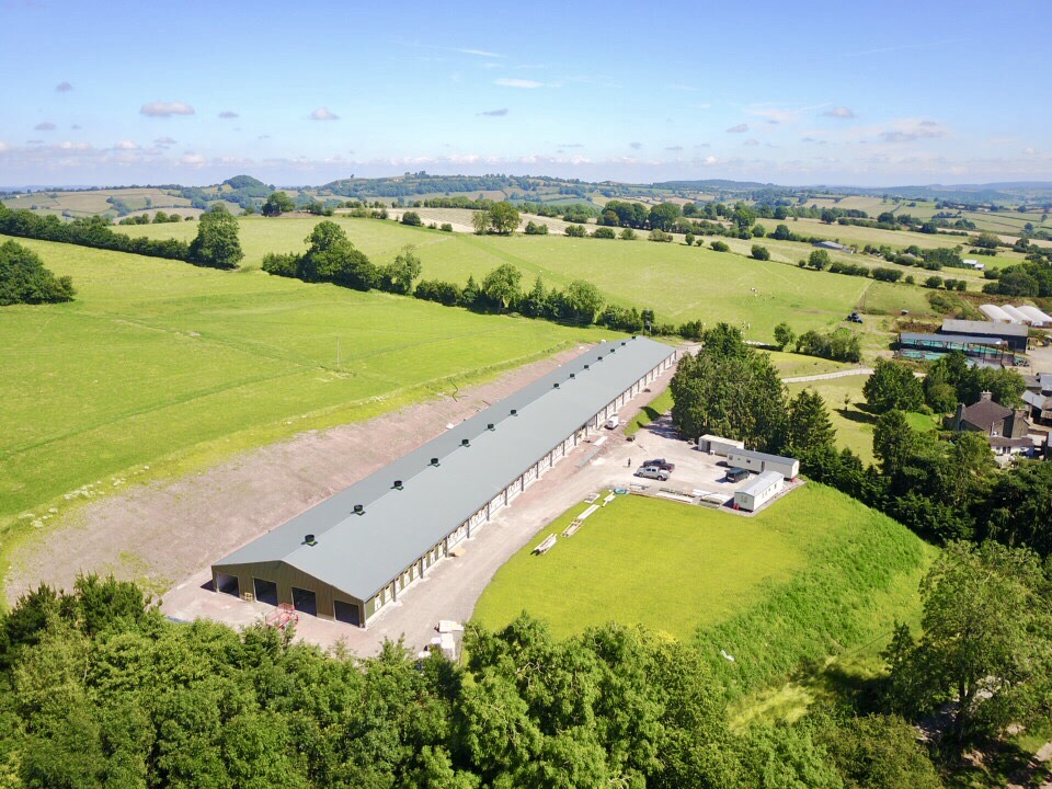 LAYER PROJECT    Hereford, England   In 2018, JF McKenna completed the fit out of two 16k aviary unit in Hereford, England.
