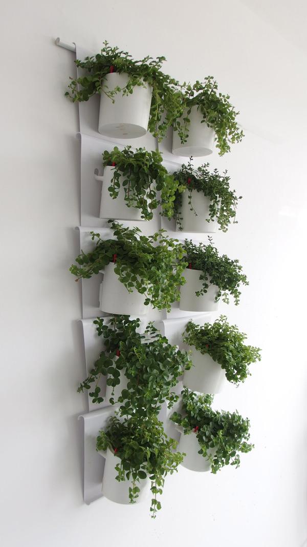 Vanzha-planters-03.jpg