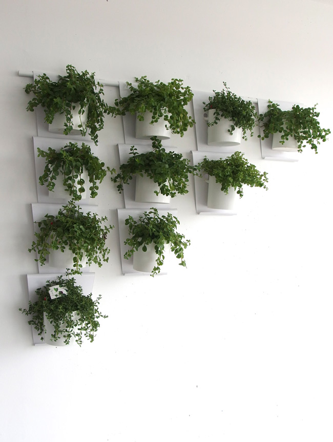 Vanzha-planters-07.jpg