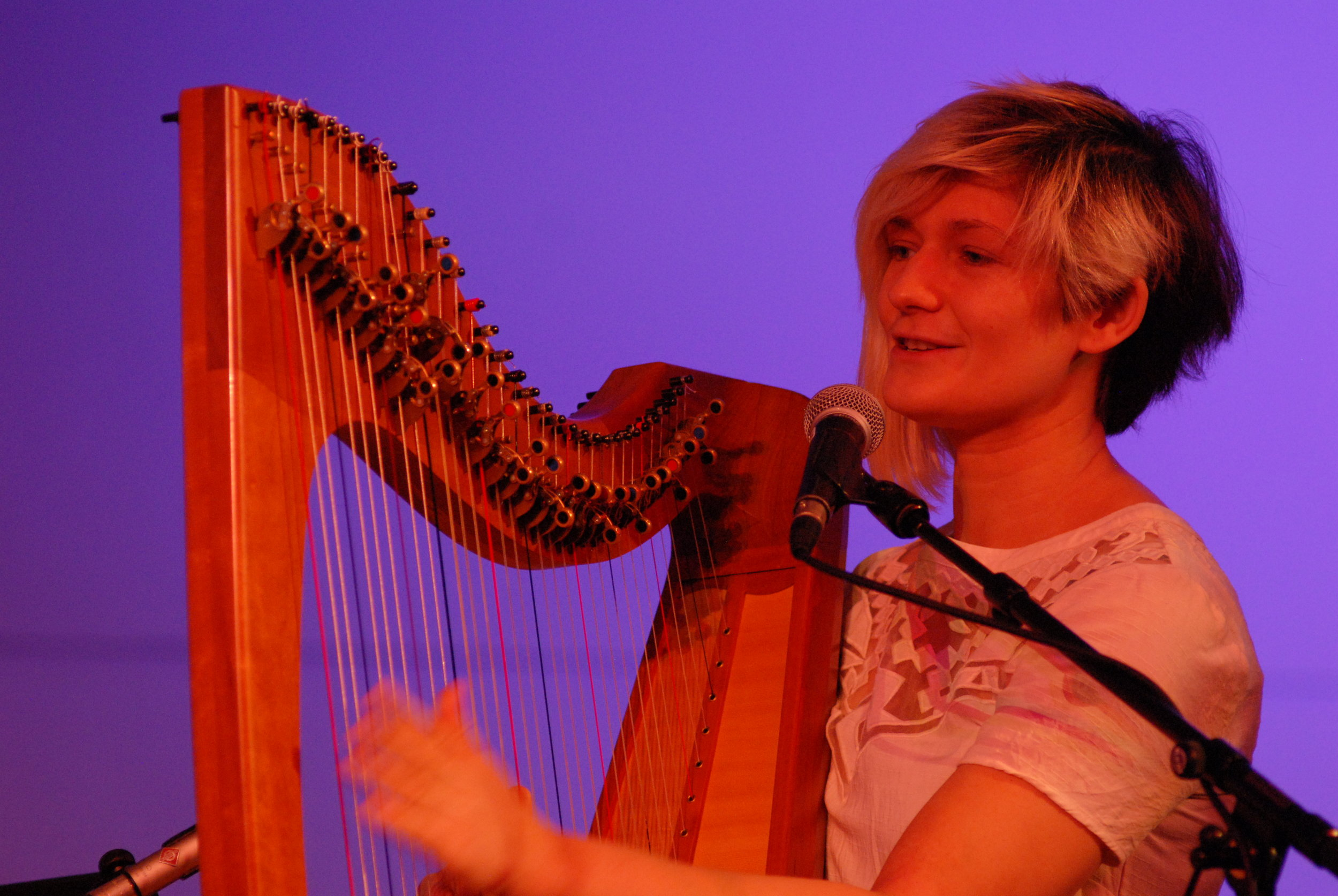 Community and Stardust Concert, Celtic Connections, Glasgow, Feb 2017 040.JPG