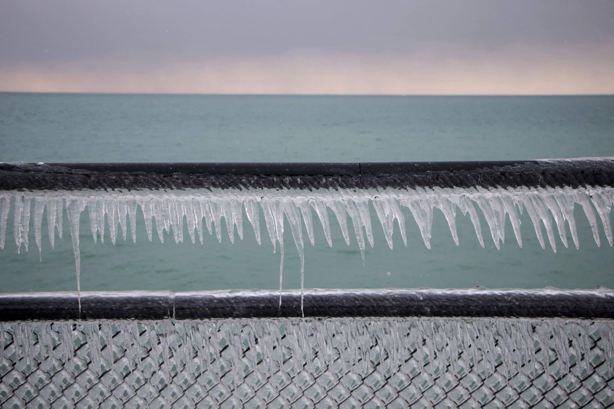 ice fence.jpg