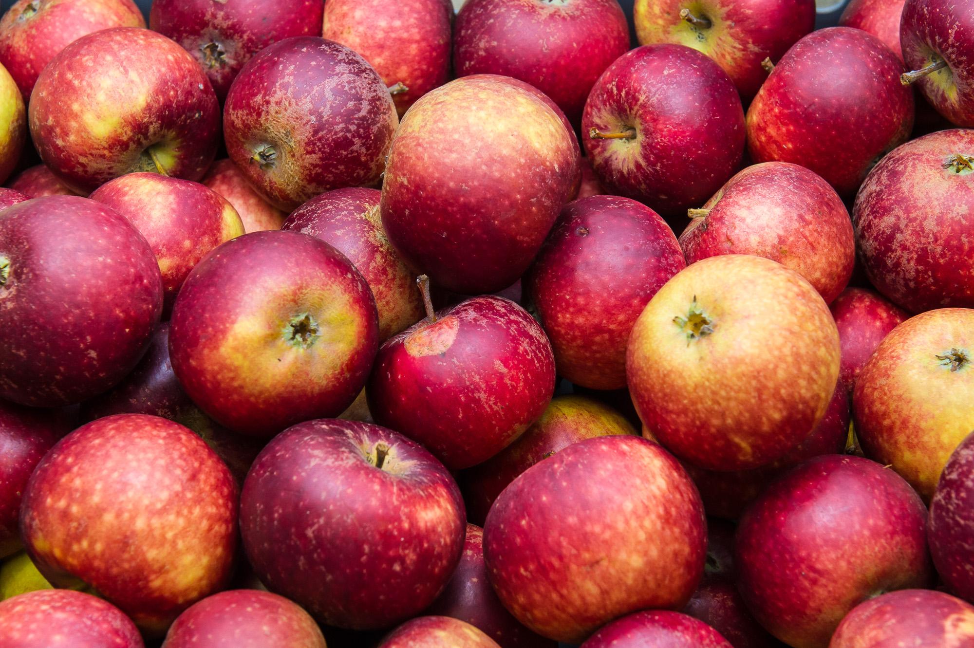 rp-frukt-3.jpg