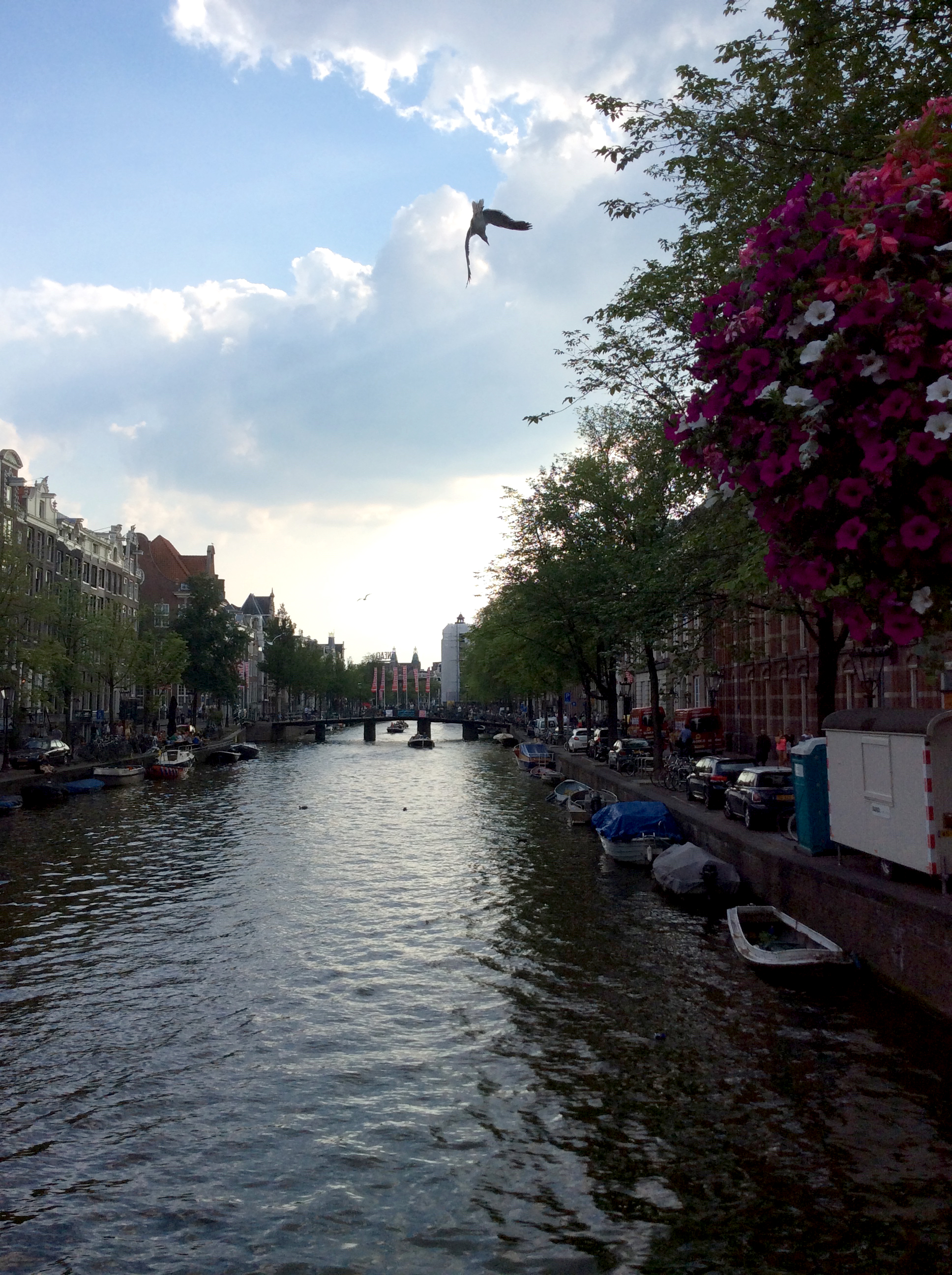 If only I could endure monotony HERE though. (The Canals, Amsterdam)