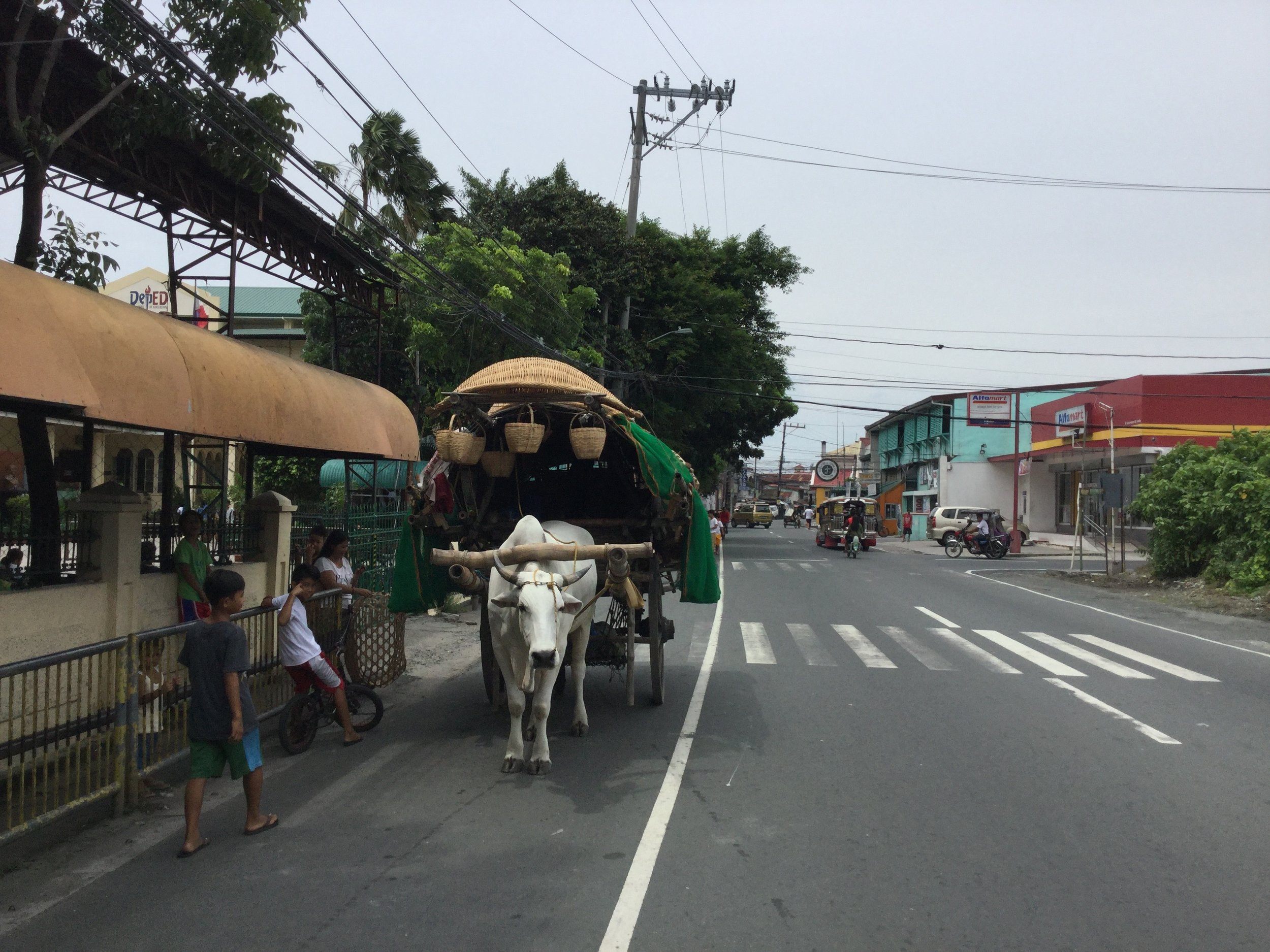 Sure we have like a dozen convenience stores but some stuff you simply can't get except via ox cart.