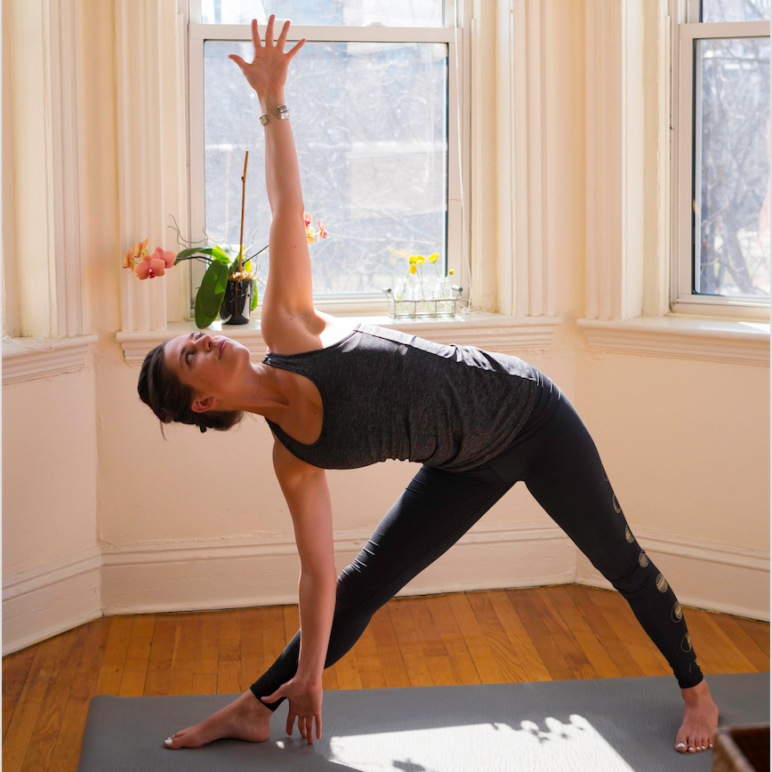 Sara began begrudgingly to practice yoga at the prodding of a friend in 2010, but it wasn't until discovering vinyasa yoga four years later that everything started to click. After years of a less-than-balanced lifestyle, Sara learned to listen and made peace with her body rather than fighting it.     As a former athlete, Sara appreciates the role of fitness, but has come to redefine health as something greater than lifting heavy things, running laps, or eating on a diet. As Sara's yoga practice deepened, so did her interest in exploring the connection between mind, body, and living well.    The connections that started in the studio led to a path of self-discovery and a deep love of healing — physically, mentally, and emotionally, and ultimately to a career in holistic health and nutrition, followed by a yoga teacher training. Sara completed her 200-hour training in January 2016 with the New School of Yogic Arts. Sara believes that in the yoga studio, deep feeling and lighthearted fun are not mutually exclusive. She hopes her classes will bring students same sense of self-awareness she experienced in discovering yoga, especially the begrudging ones.