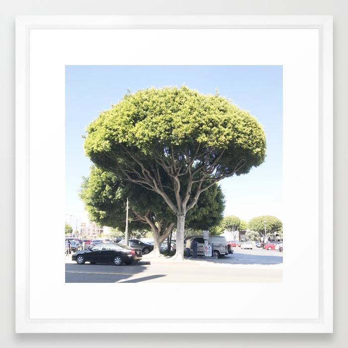 la-la-land-tree-framed-prints.jpg