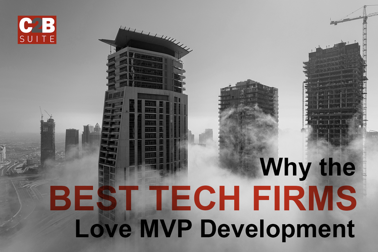 C2B-Suite-Blog-why-the-best-tech-firms-love-mvp-development.png