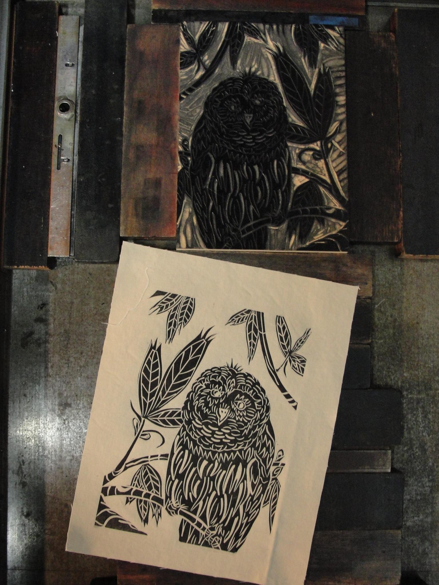 Owl printed on cotton muslin.