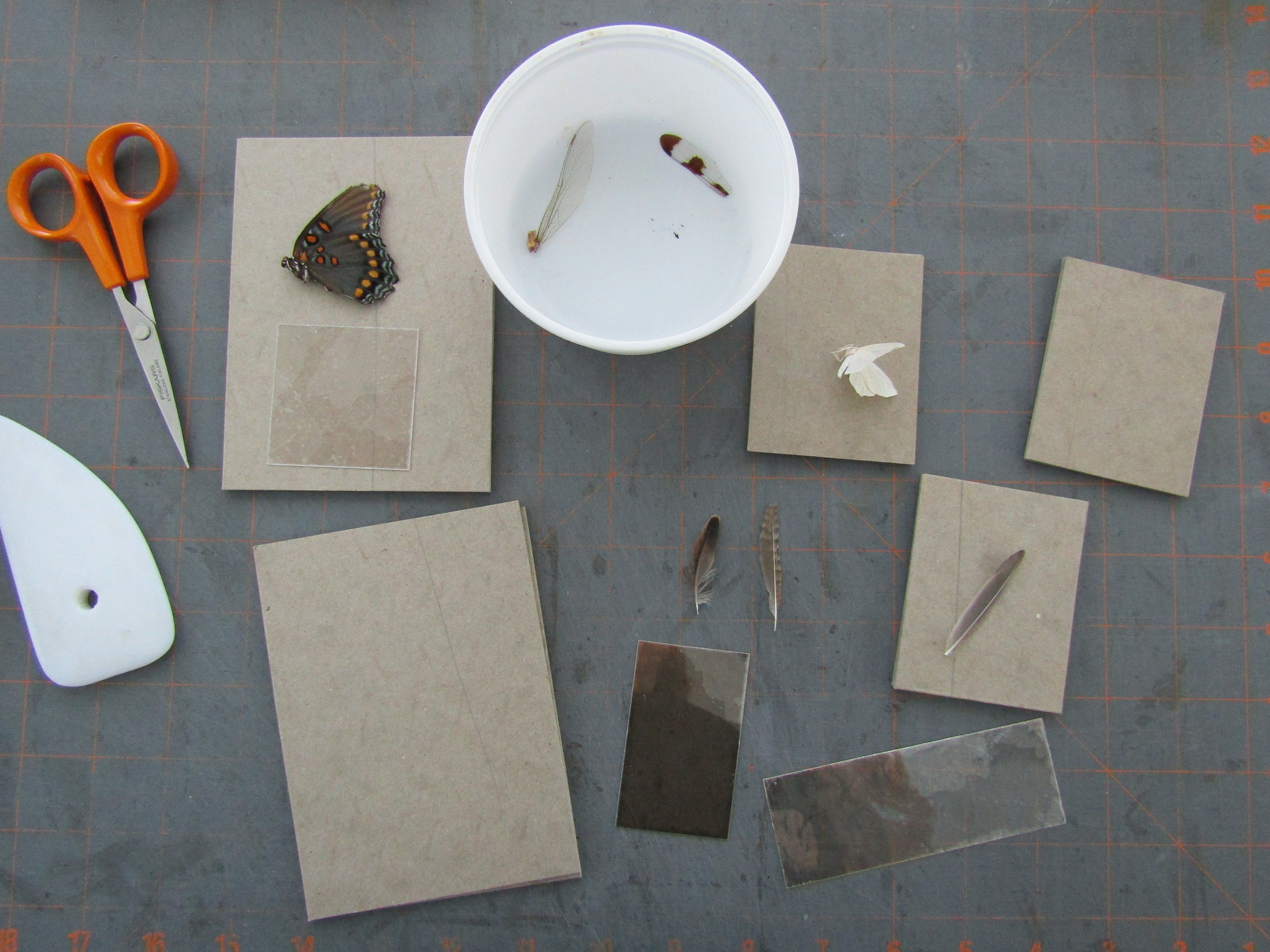 Selecting bits of ephemera to use with the books.
