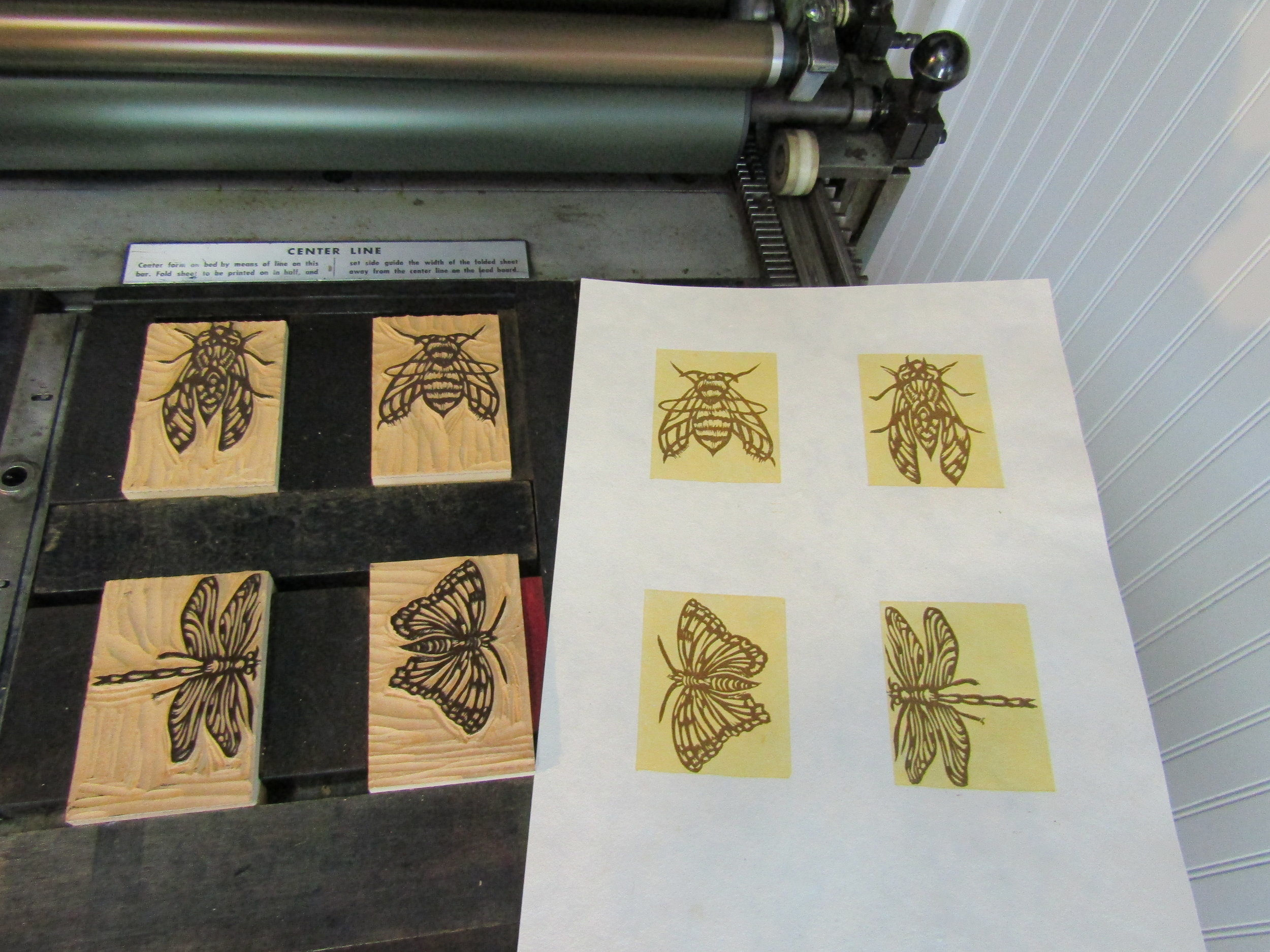Printing on my Vandercook; I printed the insects on a handmade cotton rag paper.