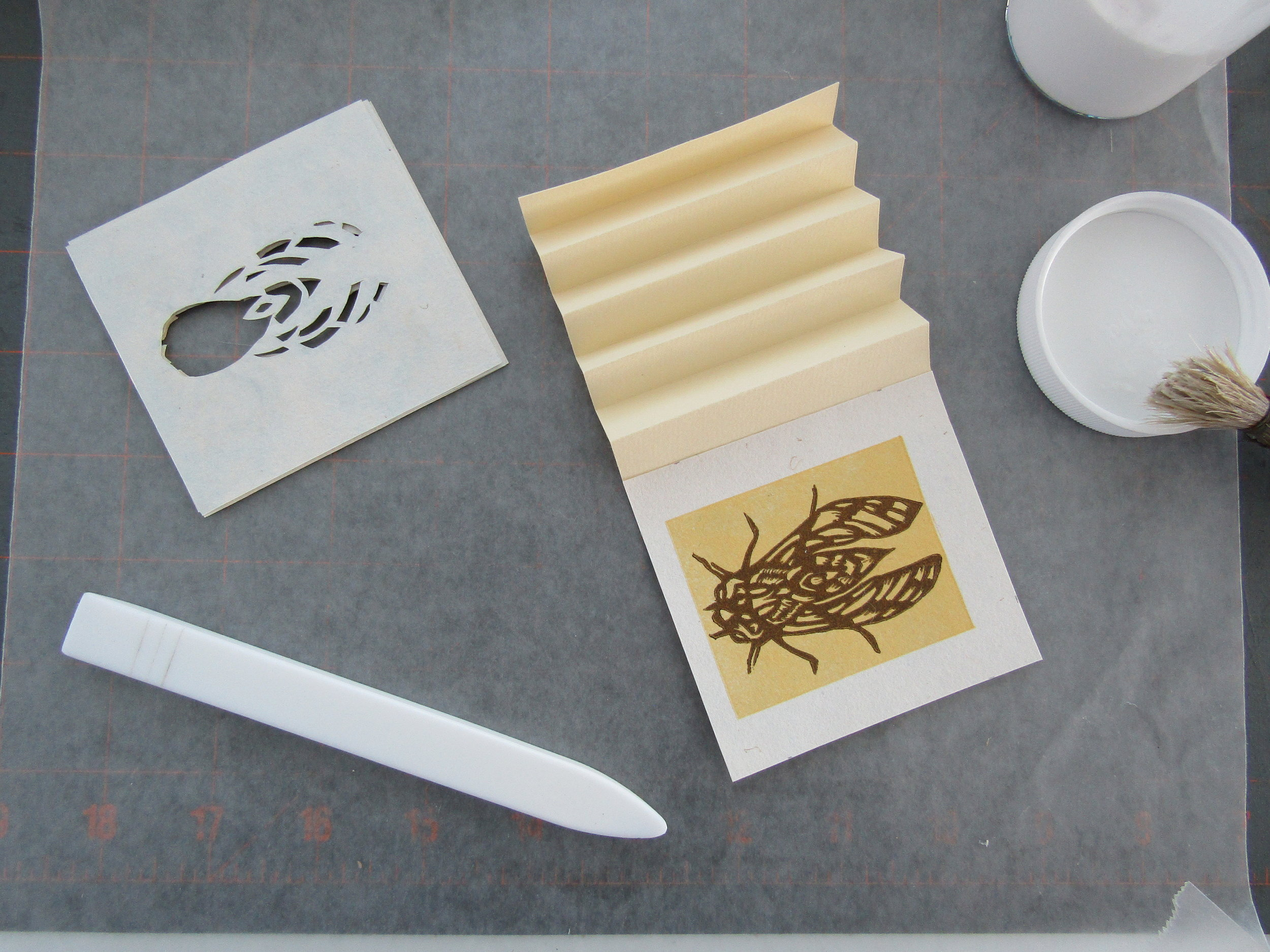 I constructed a tunnel book using layers from each print. Here is the cicada tunnel book underway. I cut away layers for each insect for each tunnel book.