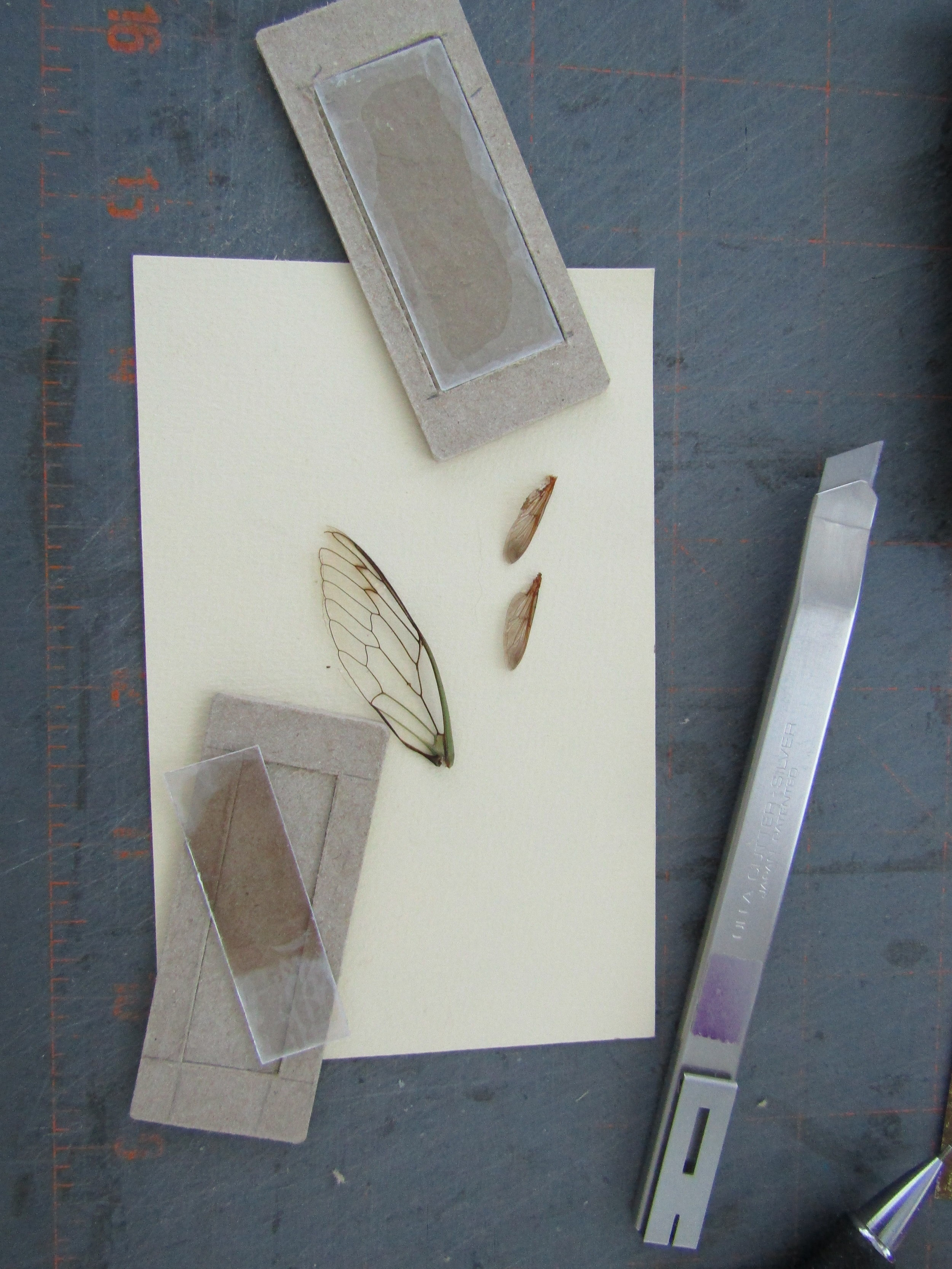 I couldn't resist adding a window at the top of each piece - I placed actual wings behind a piece of mica.