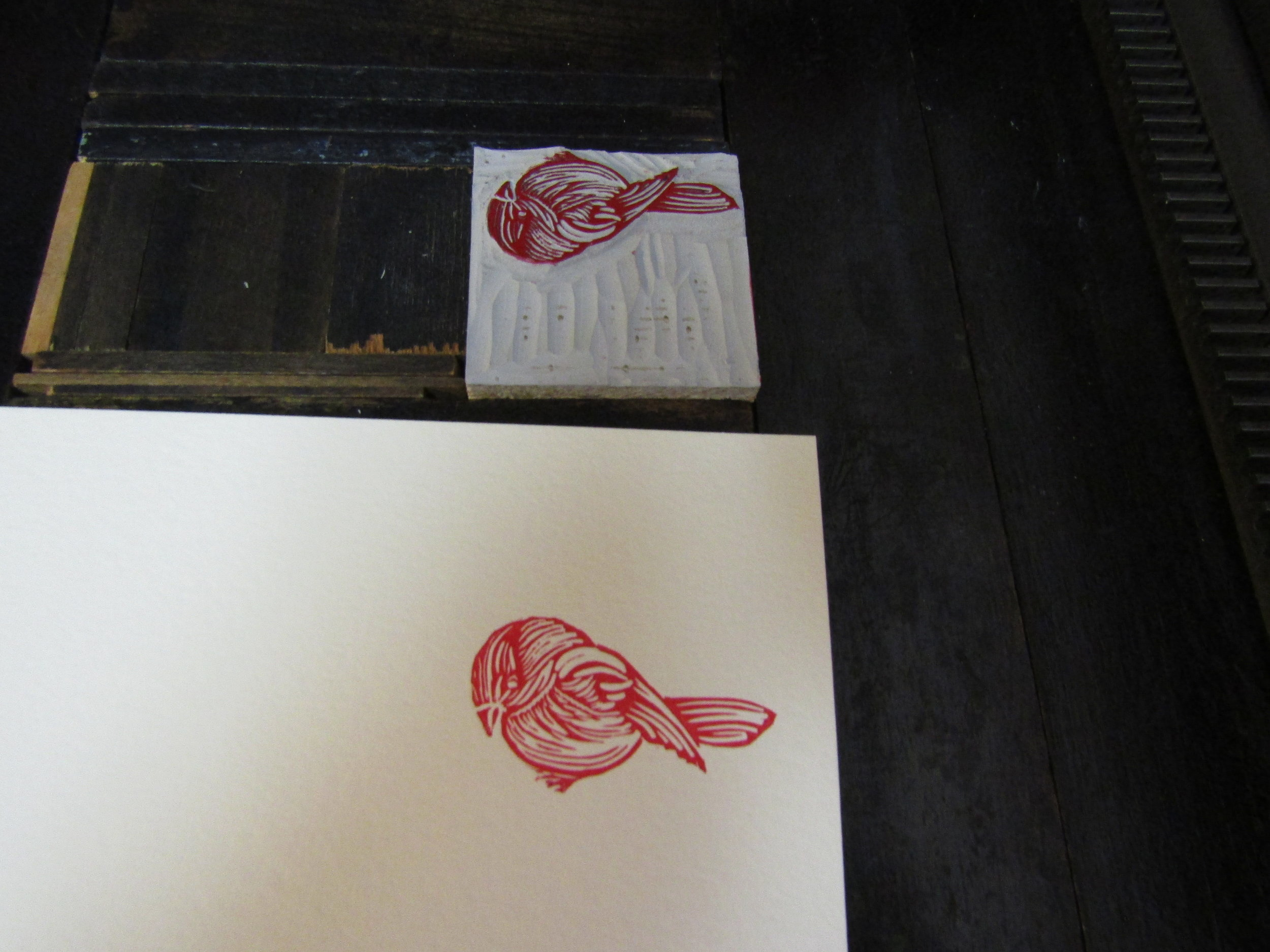 I printed the bird in red on Lettra paper.