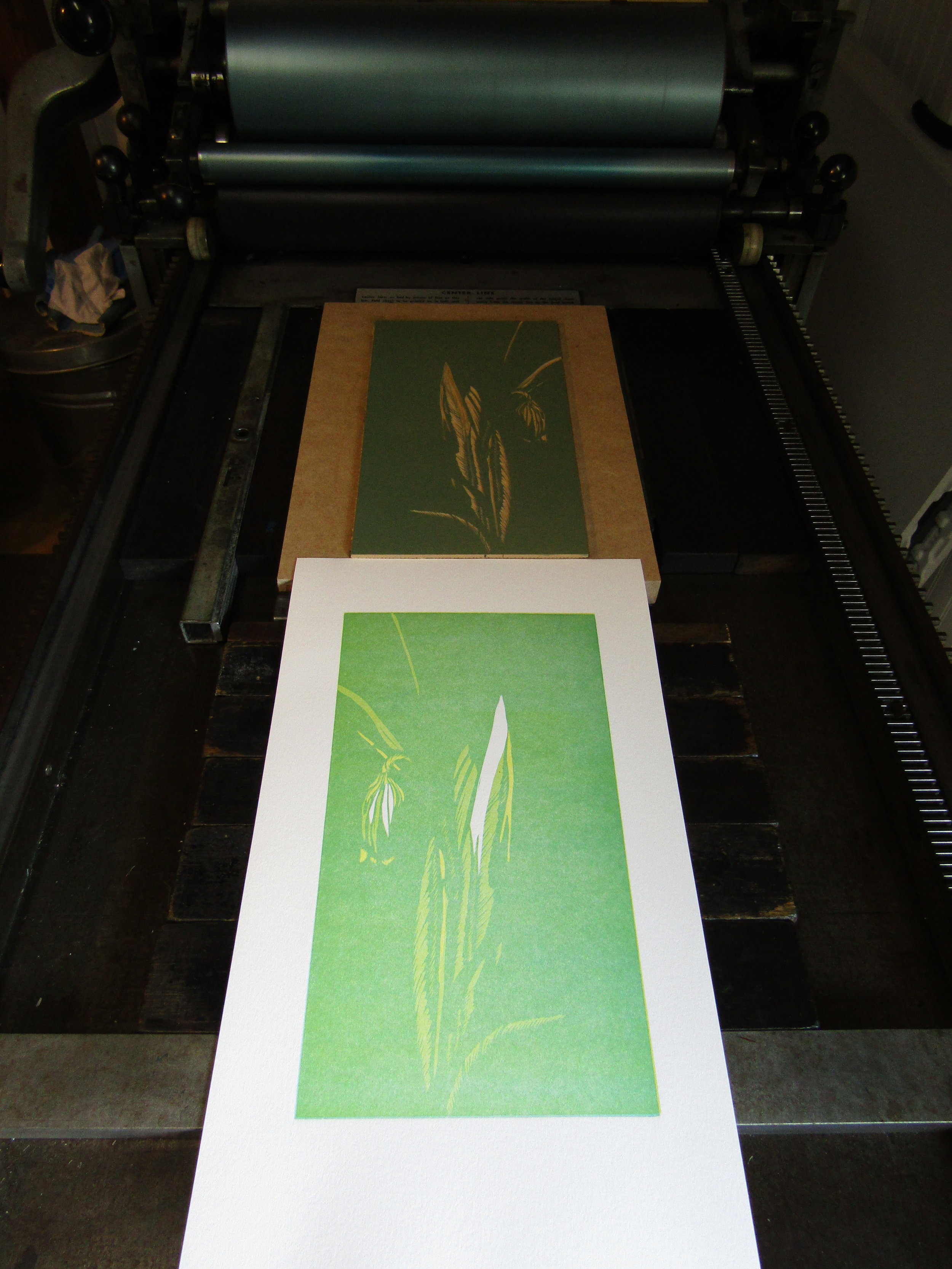 Here I am printing the second color. Notice how the flower is 'coming to life'!