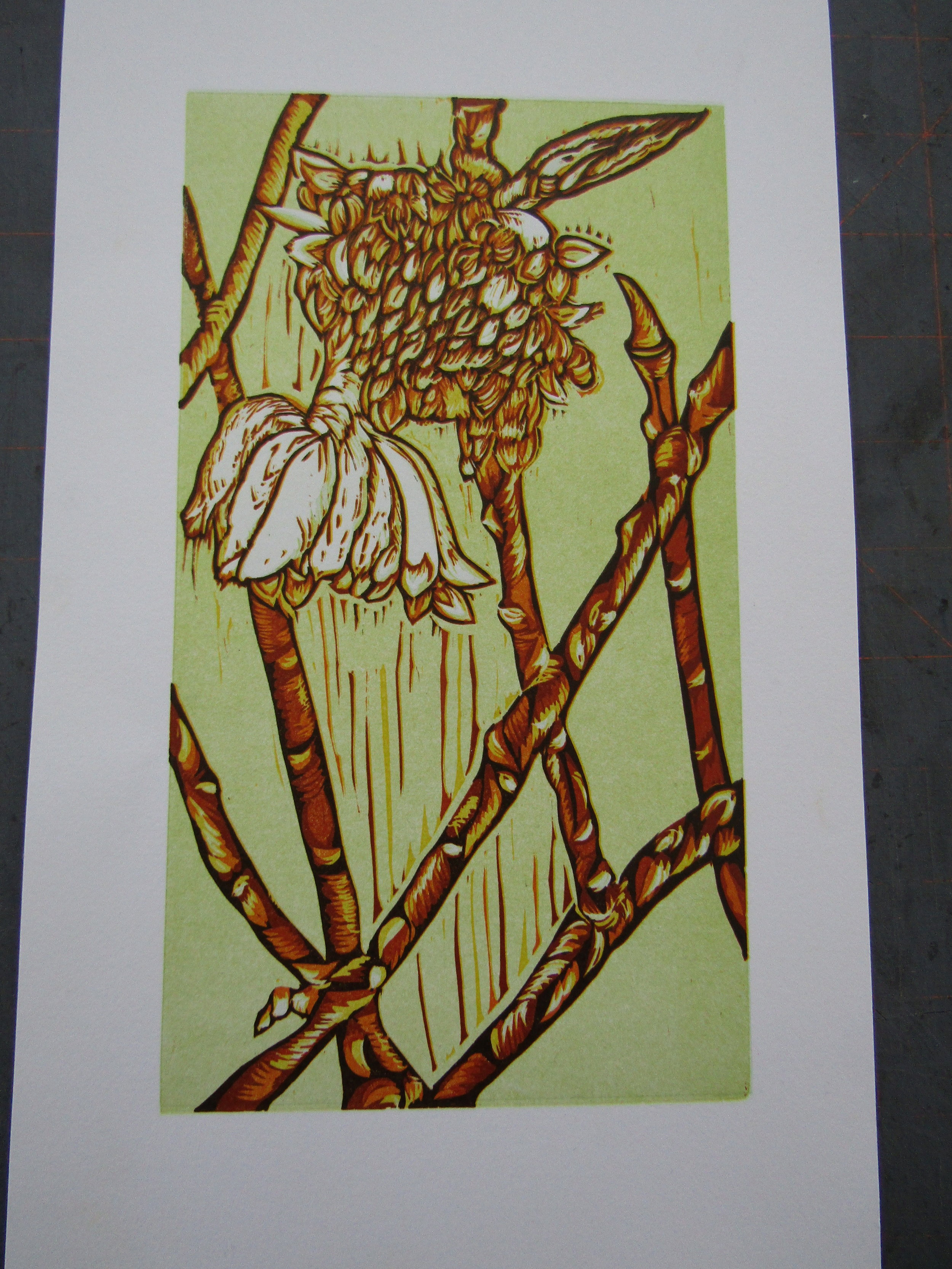 Here is the finished print. I call this one  Winter Edgeworthia . I was particularly pleased with the registration of the layers and color palette.