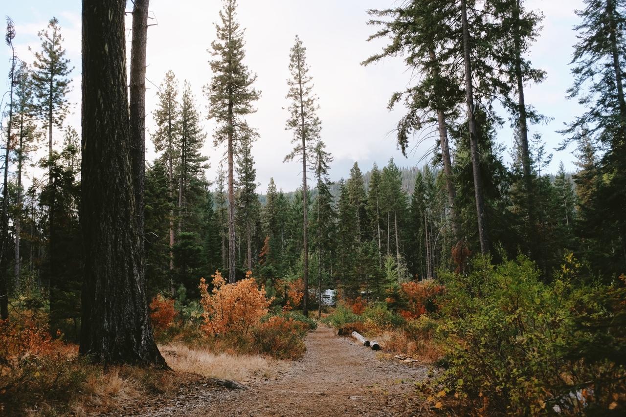 Fall camping.  ©  Lonnie Webb