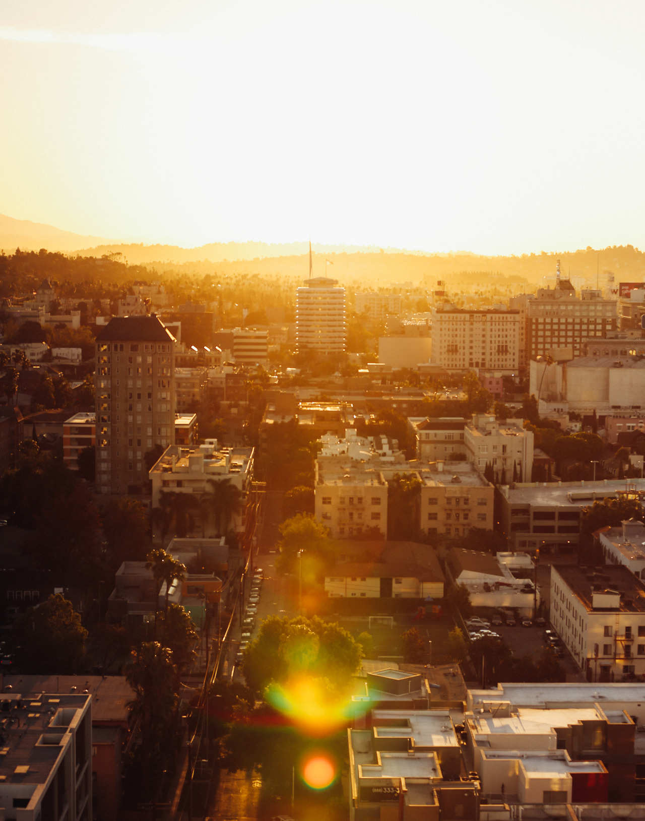 Watching the sunrise in Hollywood by  Lon.