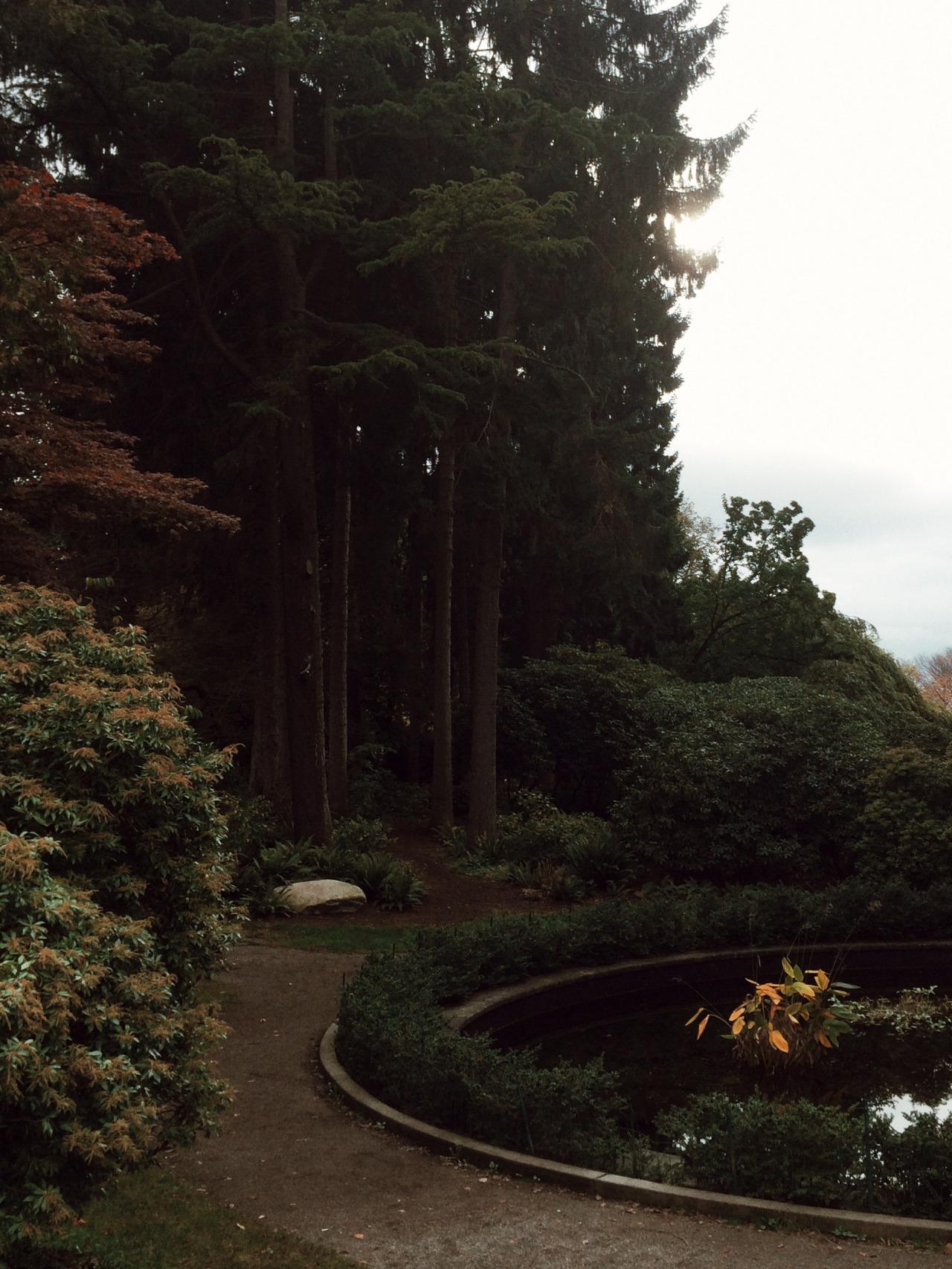 November in Seattle by  Lon.