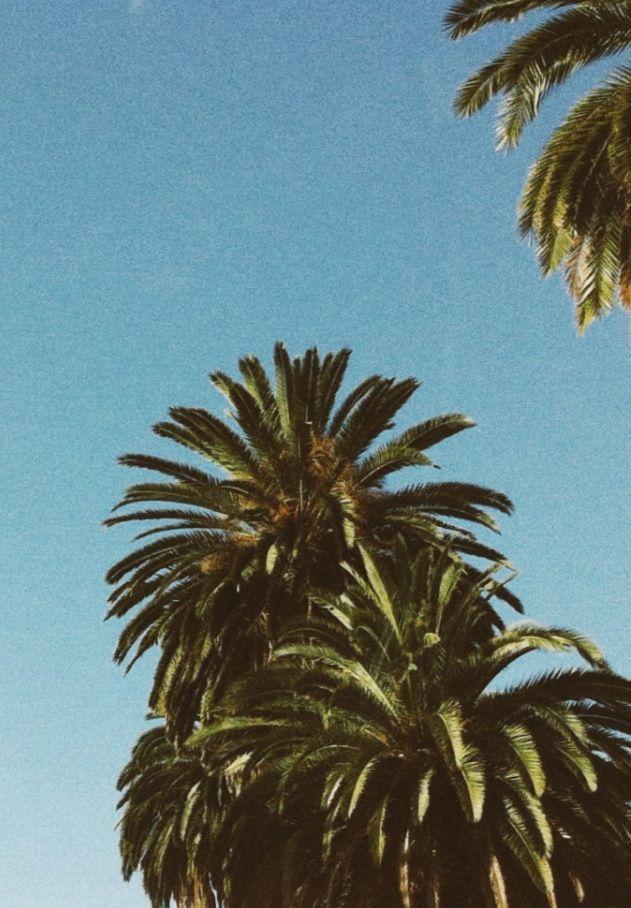 California by Lon.
