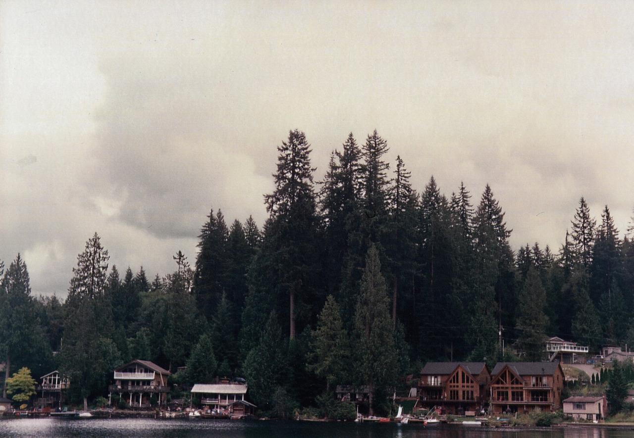 ©LONNIE WEBB    the lake