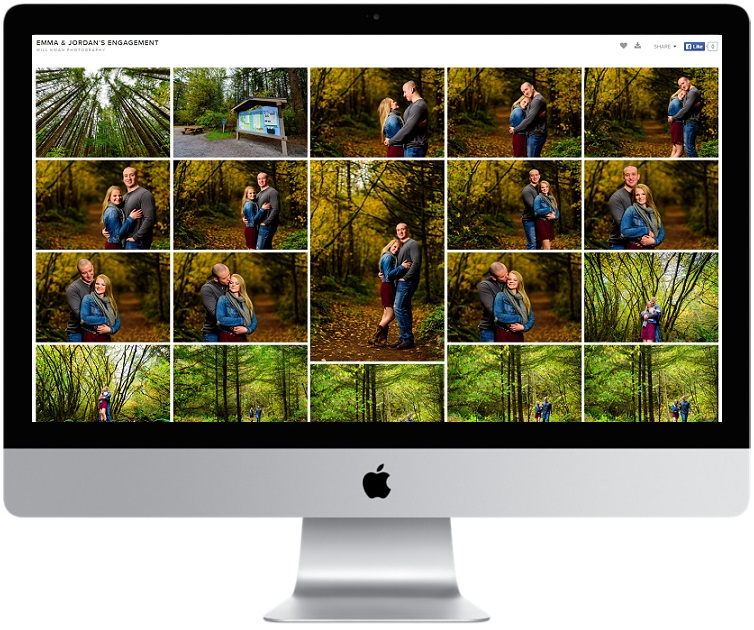 Every Package includes ALL your edited high-resolution images, displayed on an easy to share online photo gallery with beautiful covers and layouts.