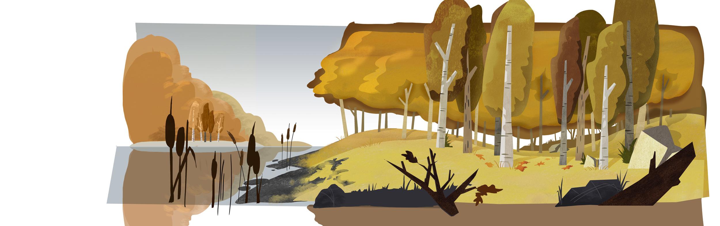 Fall_Sc02_forestpan_final.jpg
