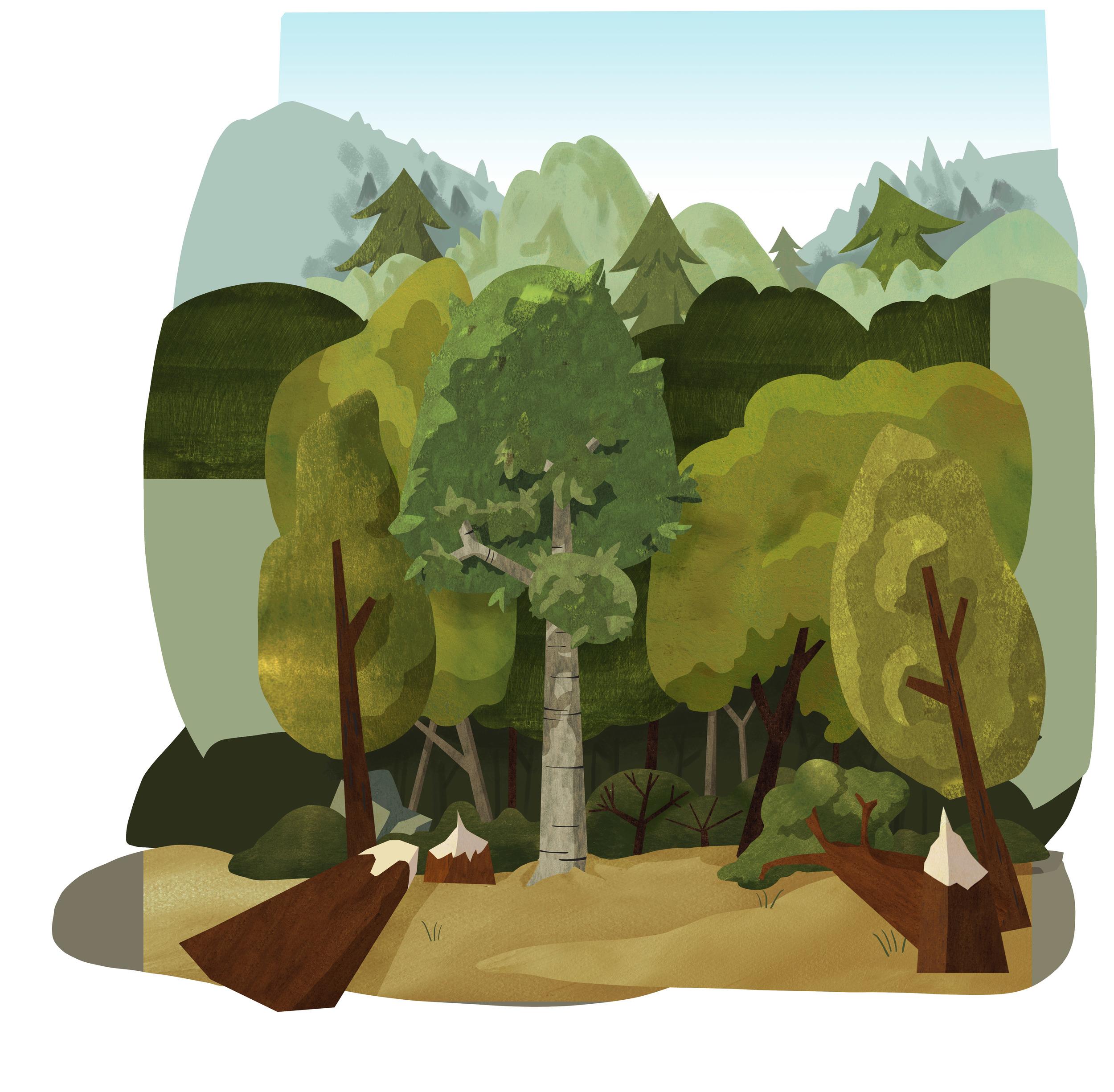 Intro_Sc01-cutting-trees-layout-v2.jpg