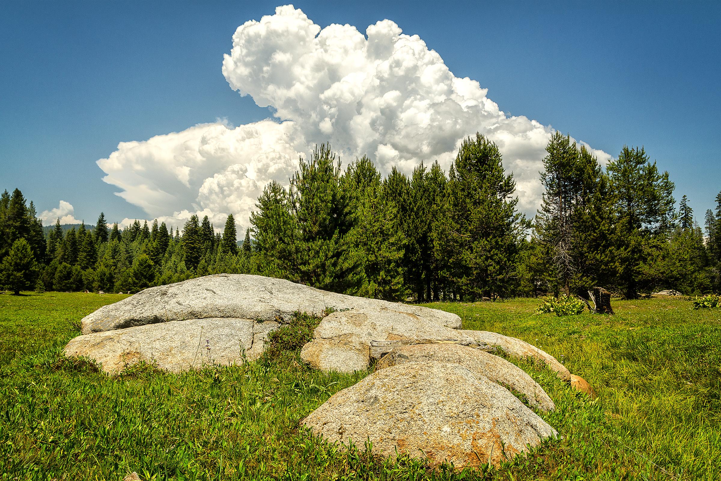 Yosemite National Forest, California. Wasim Muklashy Photography