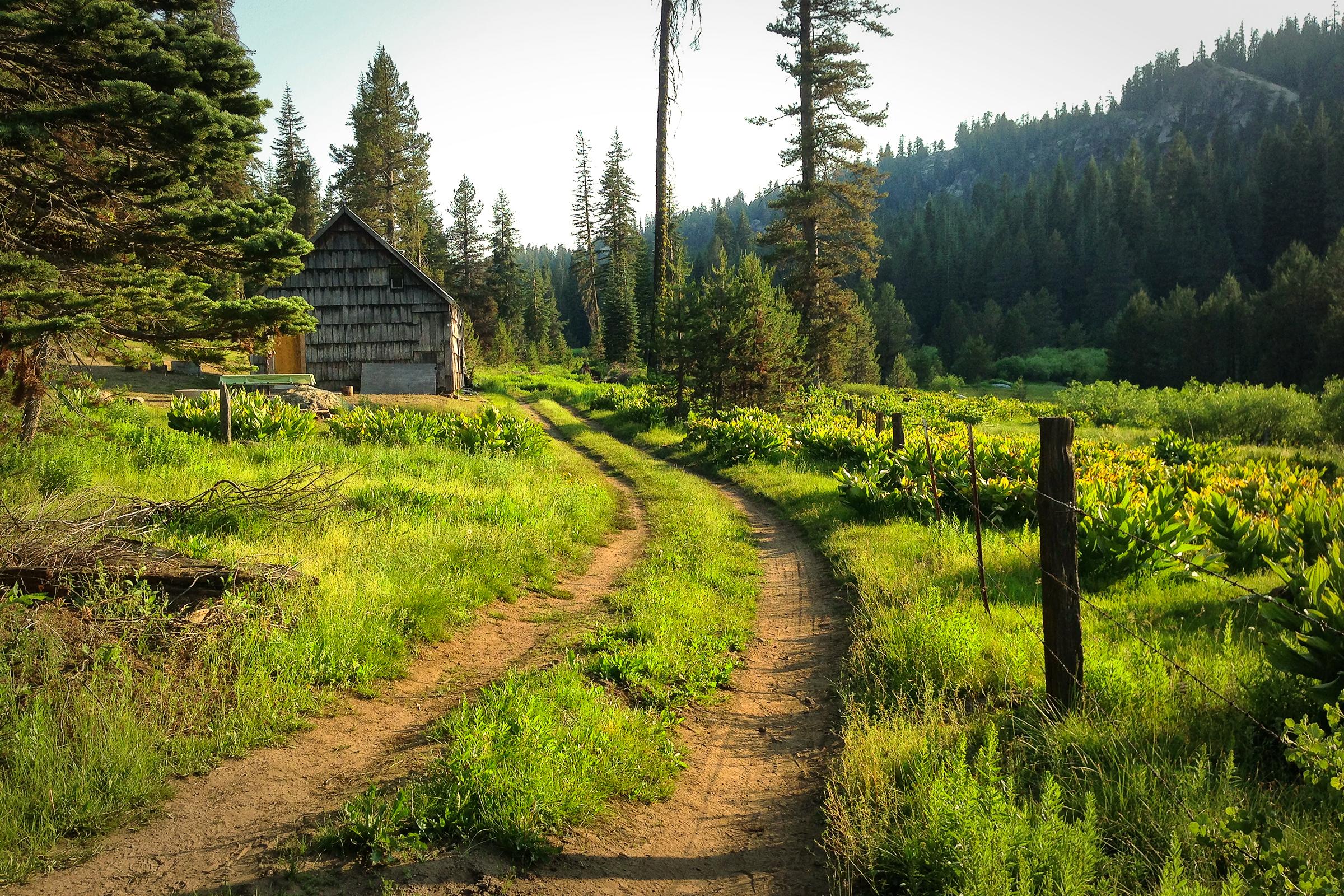 Jones Store. Yosemite National Forest, California. Wasim Muklashy Photography