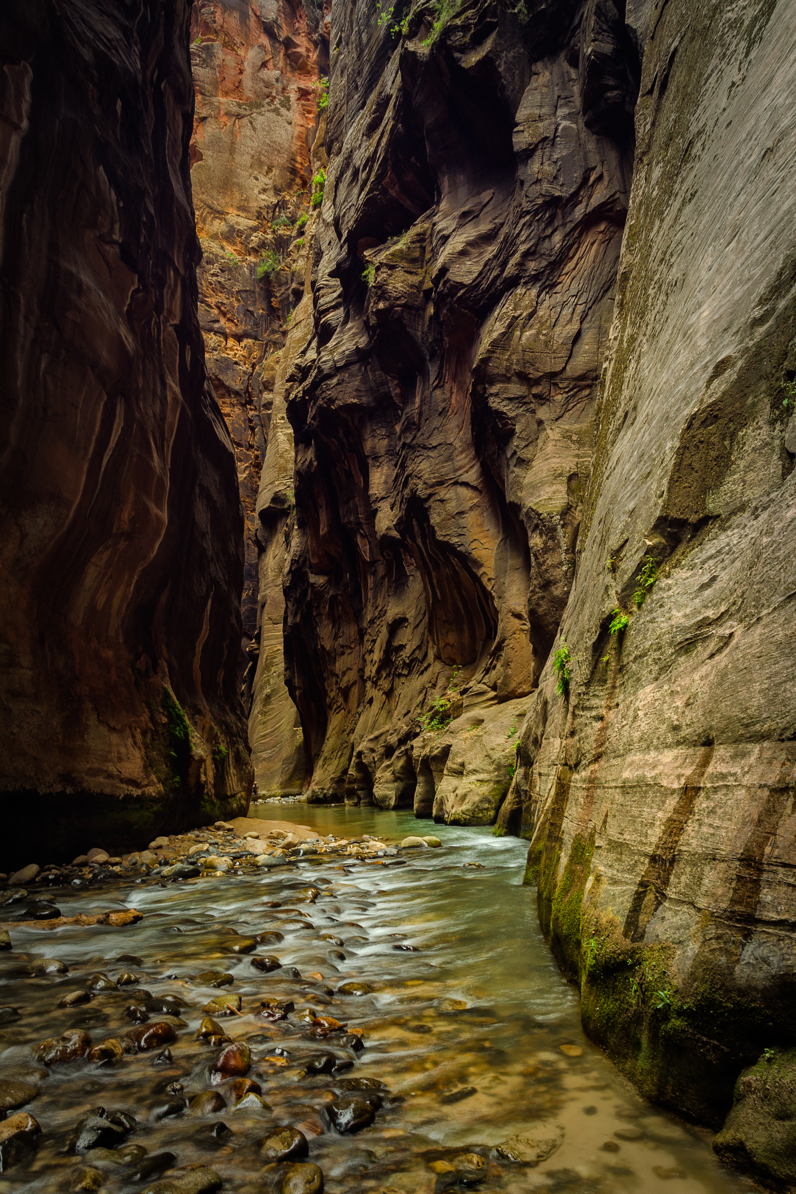 The Narrows. Wall Street. Zion National Park, Utah. Wasim Muklashy Photography.