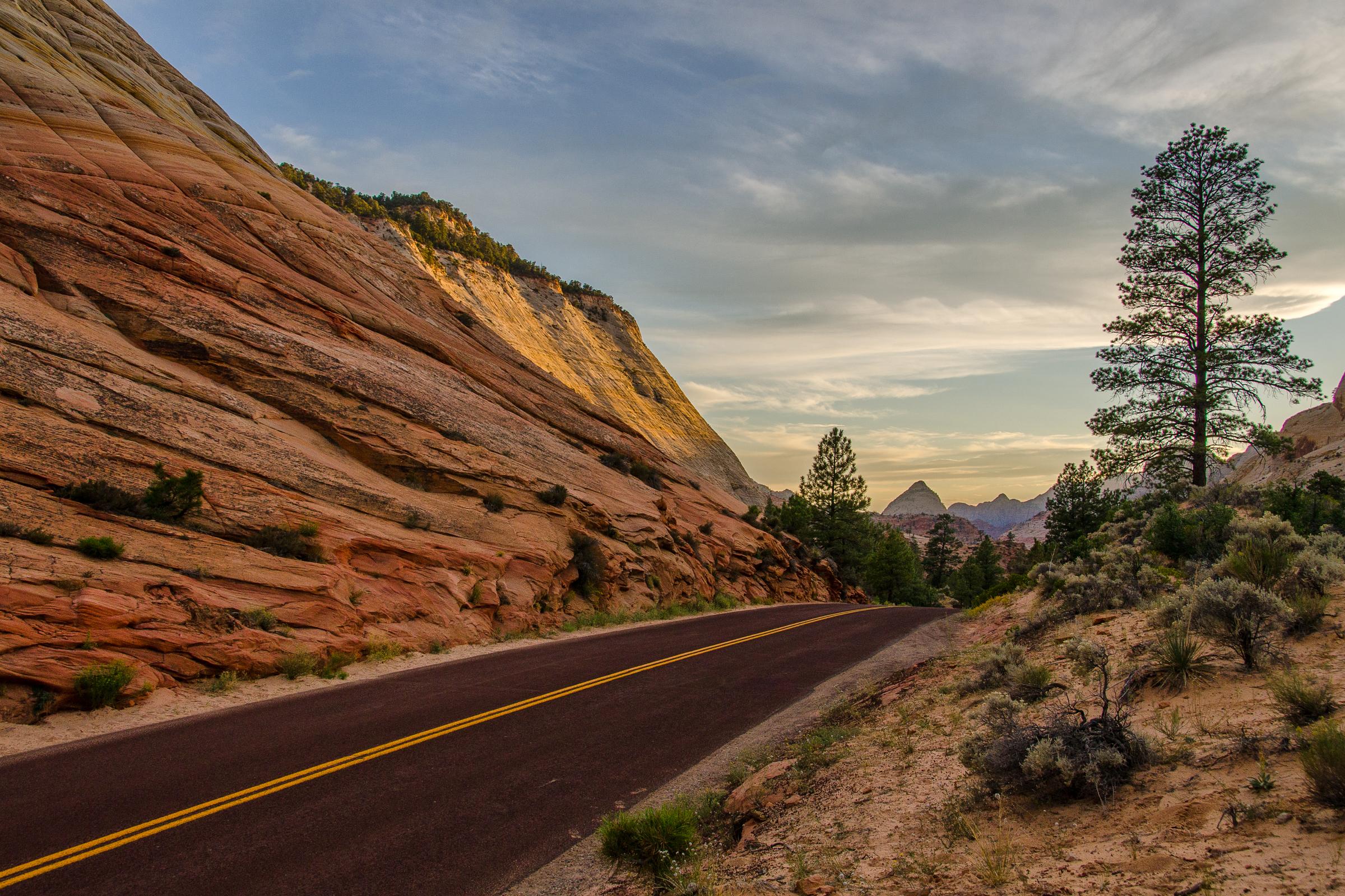 Zion National Park, Utah. Wasim Muklashy Photography