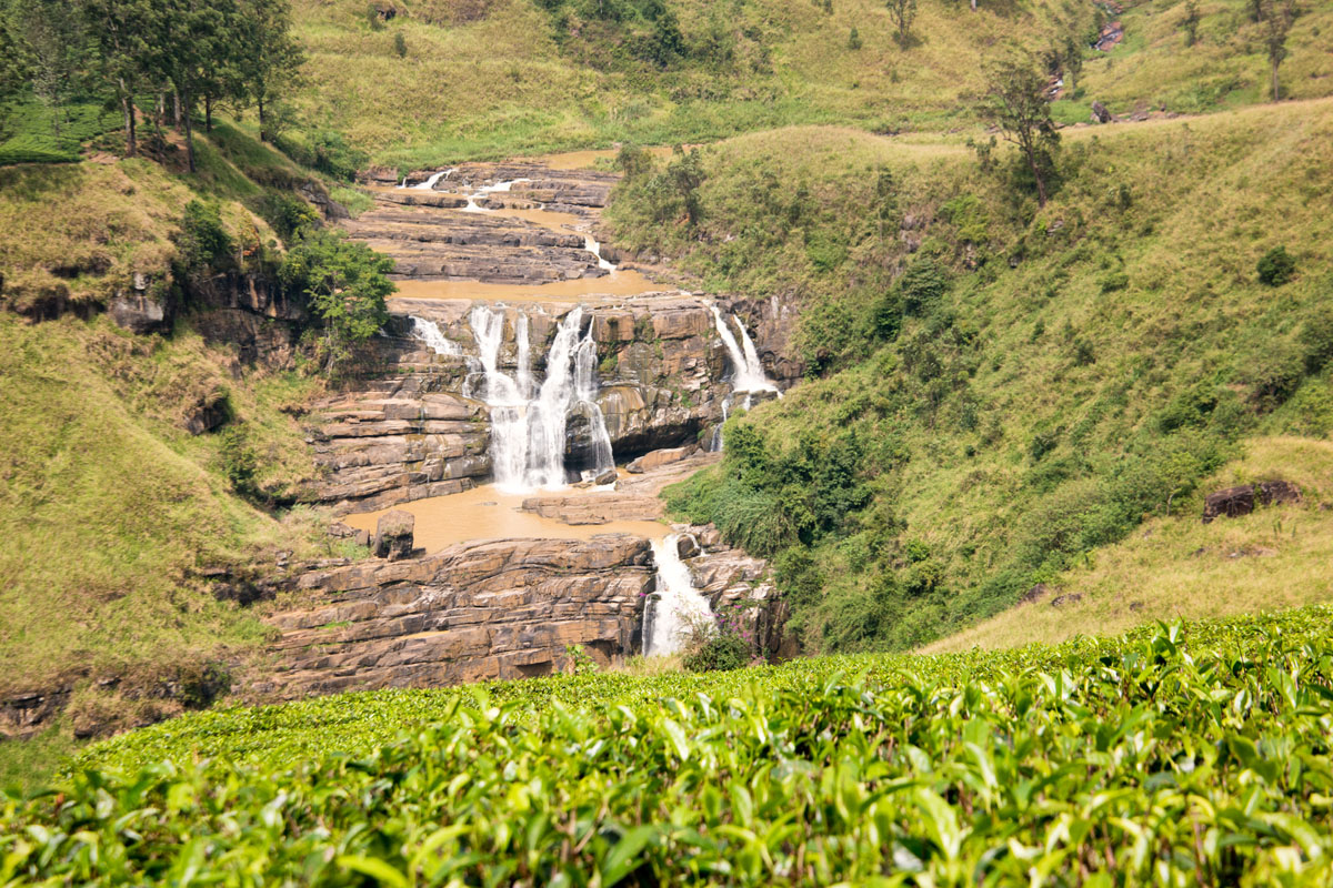 Wasim Muklashy Photography_Nuwara Eliya_Sri Lanka_February 2015_Samsung NX1_18-200mm_06