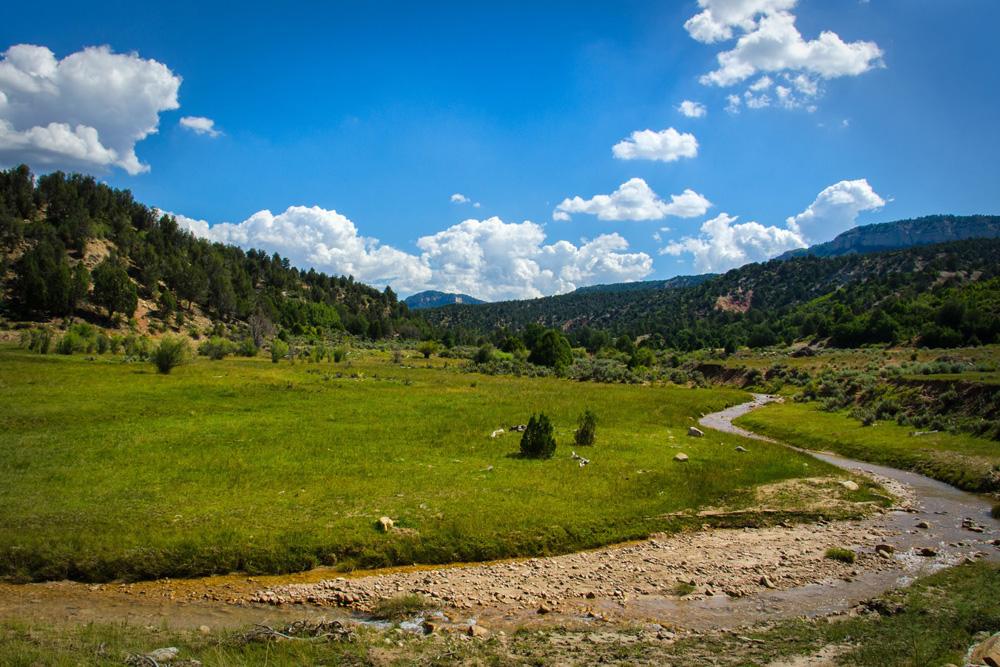 Wasim Muklashy Photography_Zion National Park_Utah_The Narrows_01.jpg