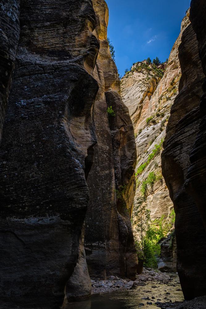 Wasim Muklashy Photography_Zion National Park_Utah_The Narrows_03.jpg
