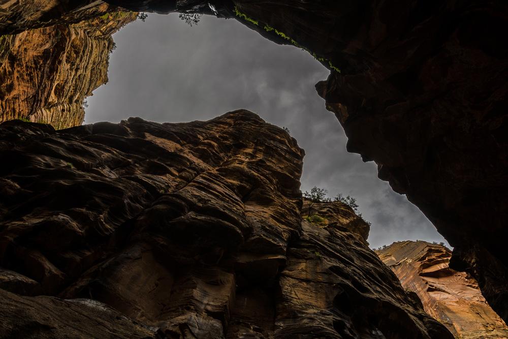 Wasim Muklashy Photography_Zion National Park_Utah_The Narrows_15.jpg