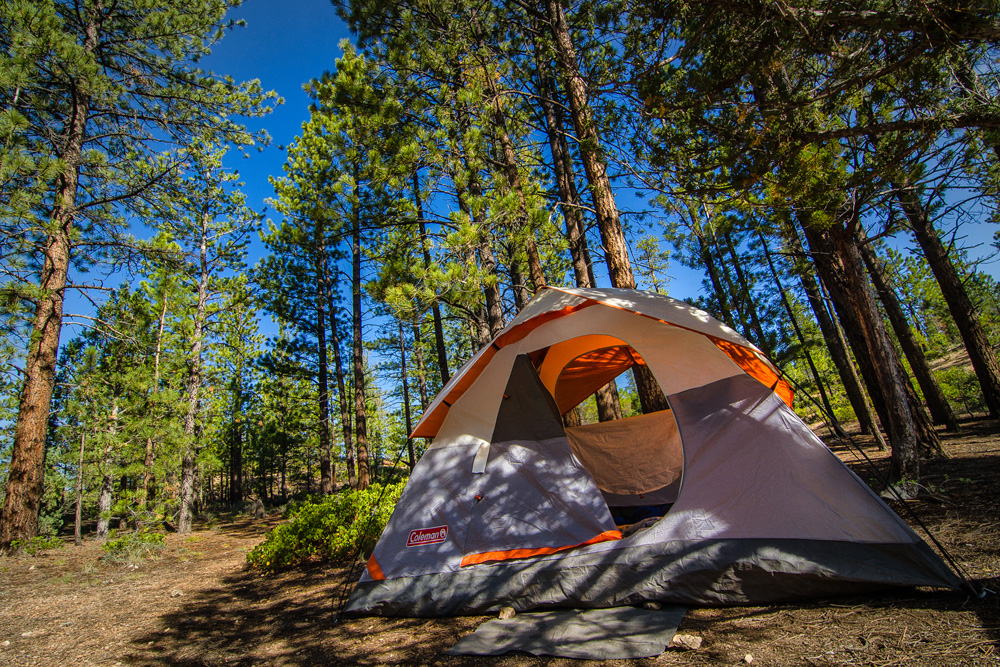 Wasim Muklashy Photography_Bryce Canyon National Park_Utah_01.jpg
