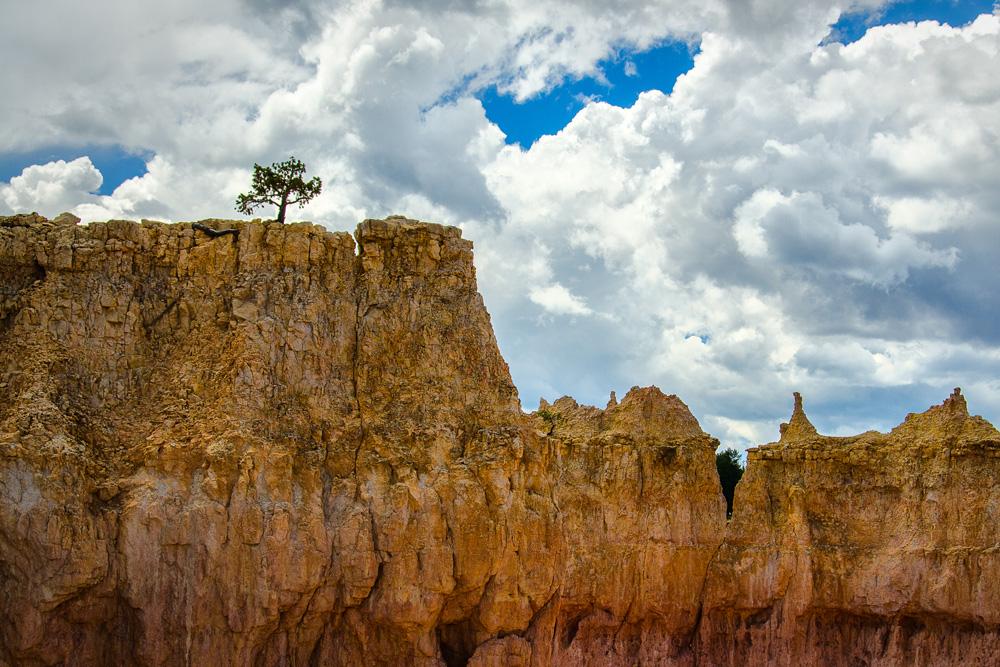 bryce canyon national park.utah.summer 2013.