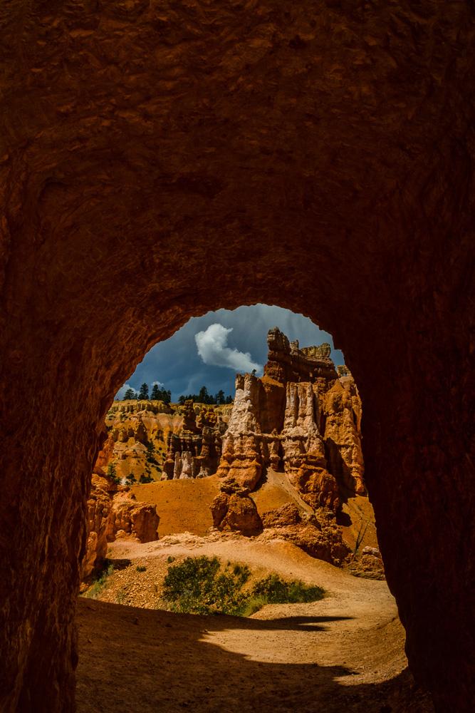 Wasim Muklashy Photography_Bryce Canyon National Park_Utah_10.jpg