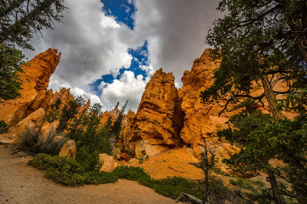 Wasim Muklashy Photography_Bryce Canyon National Park_Utah_12.jpg