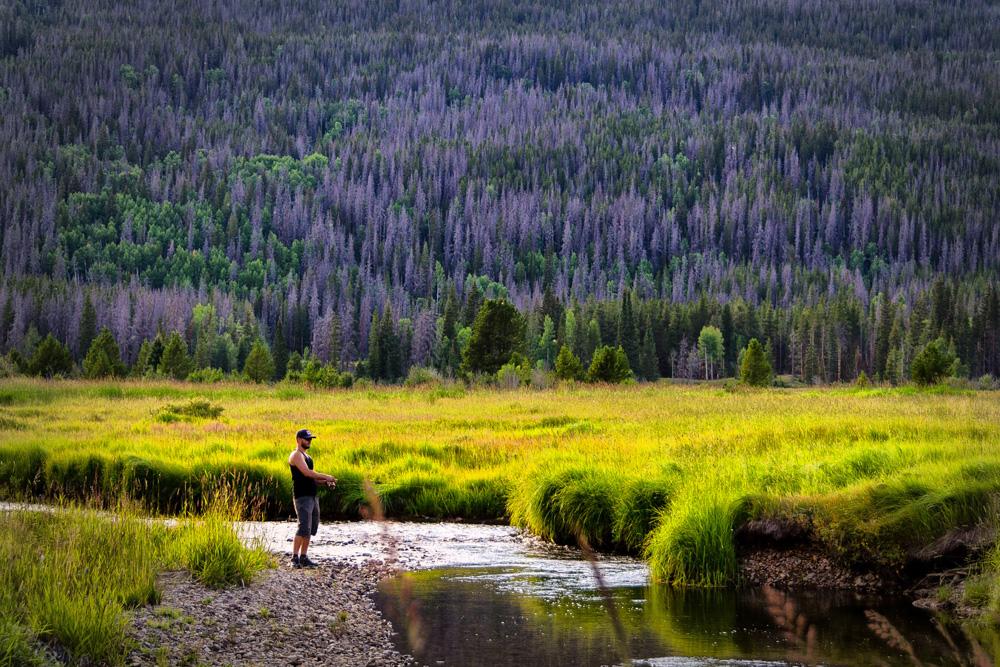 Wasim Muklashy Photography_Rocky Mountain National Park_Colorado_08.jpg
